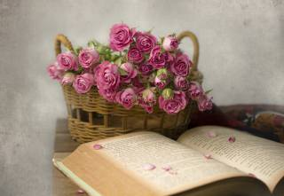 корзина, цветы, розы, книга, лепестки