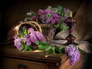 натюрморт, корзины, цветы, сирень, ветки, ткань, мешковина