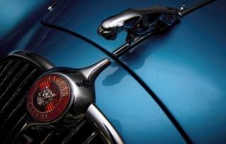 Jaguar, Auto