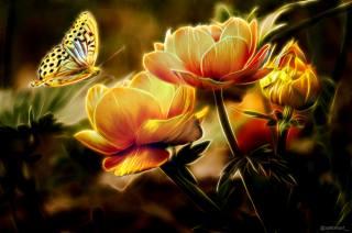 цветы, мотылек, арт, вселенная, волшебство, тайна