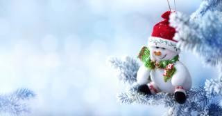 праздник, Новый год, Рождество, ветки, ель, елка, снег, игрушка, снеговик
