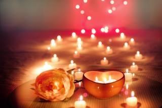 květina, růže, svícen, svíčky, boke