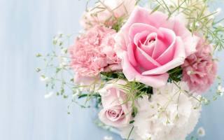 květina, květiny, růže, kytice, krása