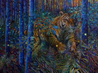 tygr, zvíře, zvířata, Textury