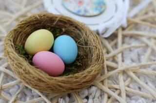 the nest, EGGS, Colorful, Easter
