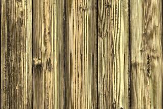 strom, prkno, textura