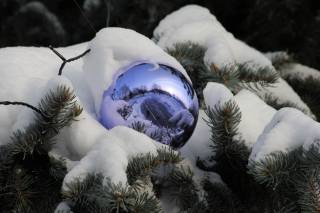 ball, decoration, branches, snow, needles, New year