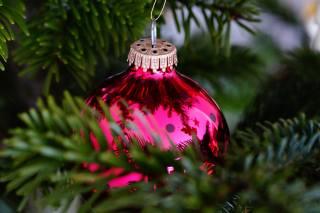 míč, dekorace, jehličí, makro, Nový rok