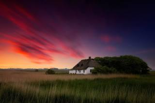 будинок, природа