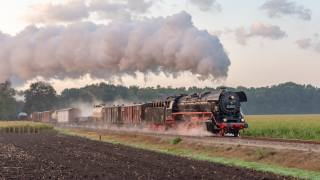 the engine, steam, locomotive, railroad, train, grass, Apeldoorn, Guelders, Netherlands