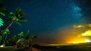 природа, пейзаж, ночь, ночной, звезда, звёзды, небо, Небесный, свет, тропики, тропический, пальма, пальмы, джунгли, лес, лесной