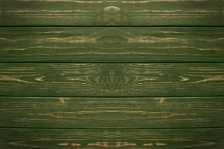 Design, symmetry, tree