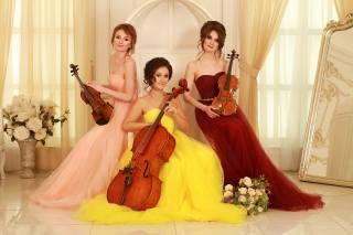 violin, music, girls, brunette, violin group dolls