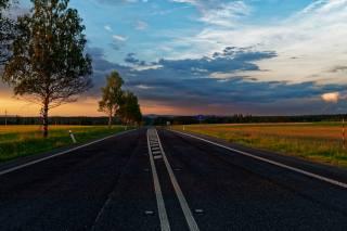 road, asphalt, trees, evening