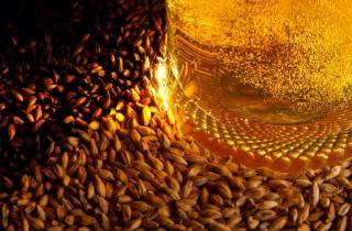 malt, beer, macro