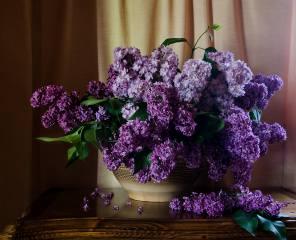 stolek, váza, větvičky, lilac, sprchovým závěsem, odstín