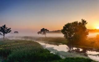 summer, morning, the river, fog