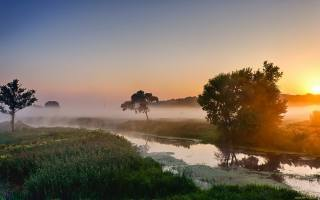 літо, ранок, річка, туман