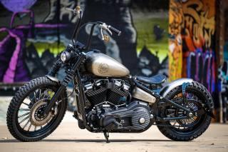 Softail, TwinCam, bobber, HarleyDavidson, custom, motorcycle