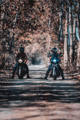 motorcycles, road, autumn