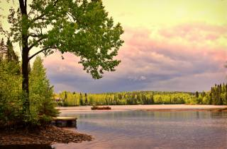forest, trees, landscape, sunset, dawn, nature, the lake, stones, shore, Canada, Quebec