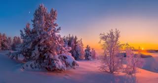 příroda, krajina, jezero, ladoga, karelia, stromy, jedli, zima, sníh, západ slunce, slunce, měsíc