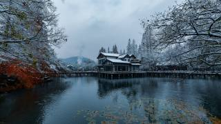 Ханчжоу, park, jezero, stromy, dům, zima