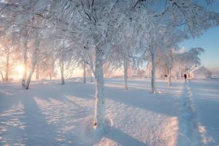 Пермский край, природа, краєвид, зима, сніг, дерева, будинок, стежина