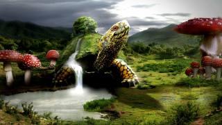 Fantasy Wallpapers. turtle, Turtles, краєвид, mushroom, водоспади