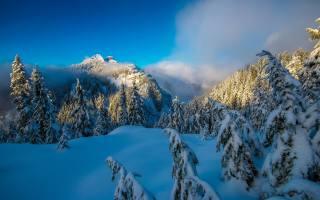 zima, les, sníh, stromy, hory, jedli, Kanada, závěje, Vancouver, Kanada, British Columbia, vancouver