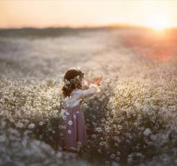 pole, léto, západ slunce, květiny, příroda, heřmánek, dívka, věnec, dítě, dítě, Кудрова Татьяна