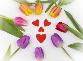 тюльпаны, сердце, оформление
