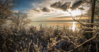 příroda, krajina, zima, sníh, KEŘE, stromy, větvičky, záliv, západ slunce, nebe, mraky