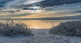 příroda, krajina, zima, sníh, KEŘE, záliv, nebe, mraky