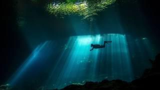 diving, underwater world