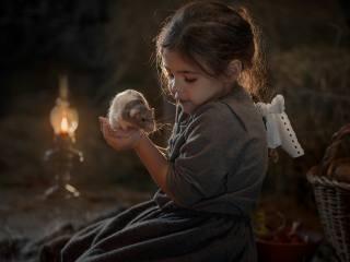 Елена Миронова, dítě, dívka, šaty, косичка, Zvíře, hlodavec, krysa, mazlíček, lampa