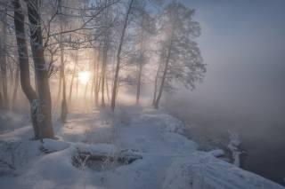 природа, пейзаж, зима, снег, деревья, туман, река, Пехорка, рассвет, утро, солнце