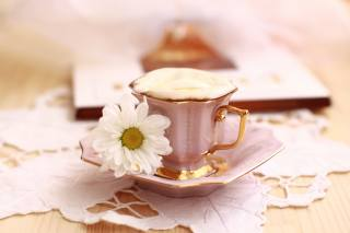 coffee, cappuccino, chamomile, Cup, pink