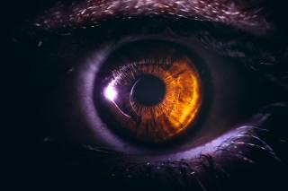 oko, žák, zblízka, карий, řasy