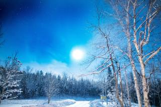 природа, пейзаж, зима, дорога, лес, небо, снег, деревья, березы