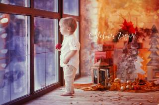 child, Toys, boy, baby, window, bathroom, holiday, New year, decoration