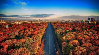 Germany, the city, Berlin, home, nature, landscape, road, highway, forest Park, trees, autumn