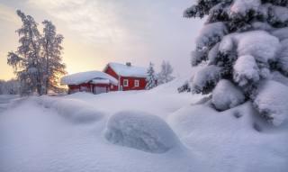 природа, пейзаж, зима, снег, деревья, ели, сугробы, домик, Швеция