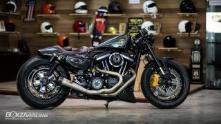 Harley Davidson, lamborghini, motocykl