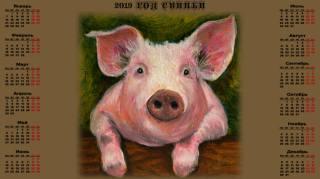 календарь, 2019, поросёнок, Свинья