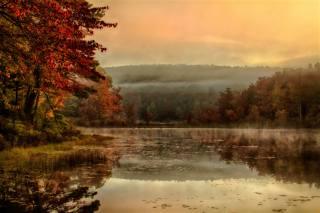 туман, відображення, дзеркало, озеро, ранок, осінь, природа
