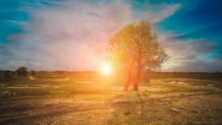 Схід сонця, степ, стежина, сонце, природа