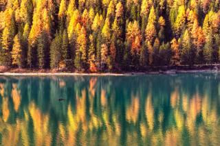 Гордєєв Едуард, Эд Гордеев, едуард гордєєв, природа, краєвид, гори, доломіти, осінь, альпи, озеро, Брайес, човен, ліс, відображення