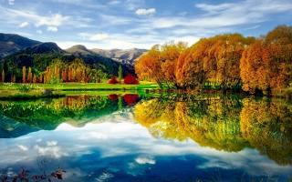 осінь, природа, ставок