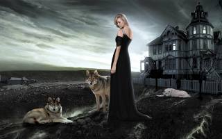 girl, wolves, the house, landscape, Composition